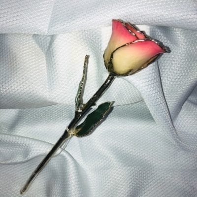 White Pink Rose With Silver Trim