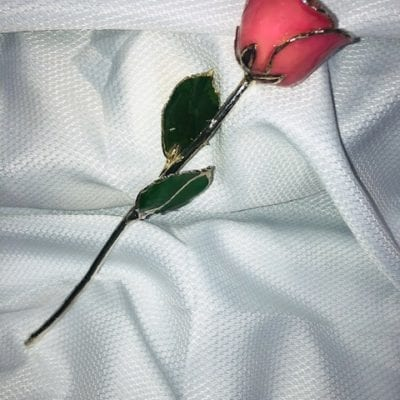 Pink Rose With Silver Trim