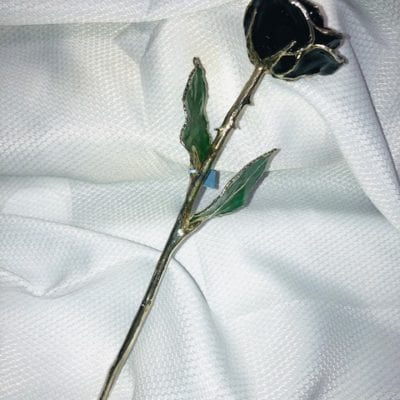 Black Rose With Silver Trim